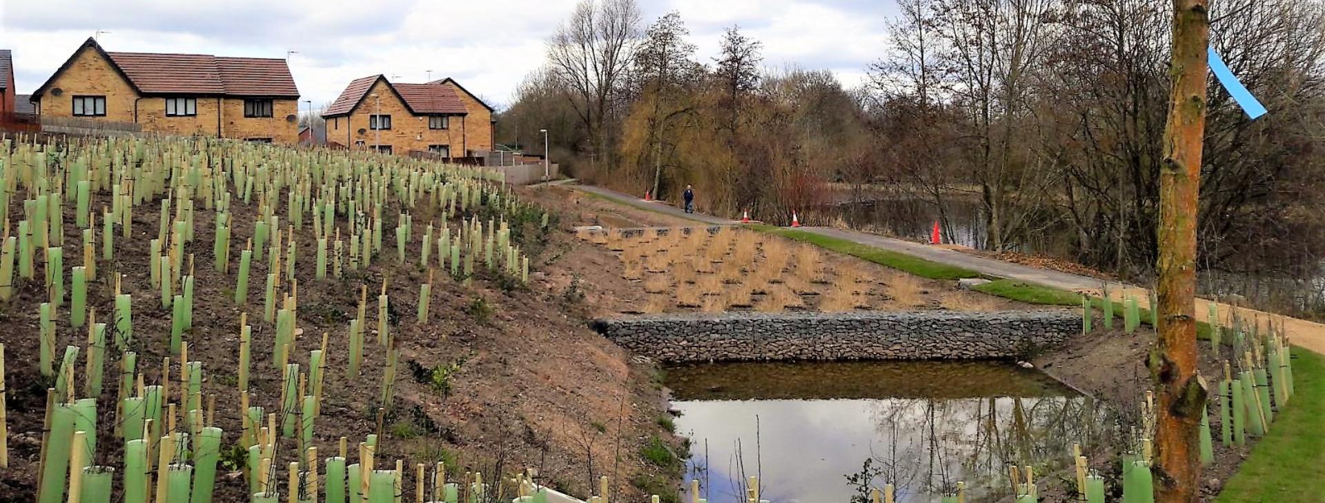 Sustainable urban design scheme